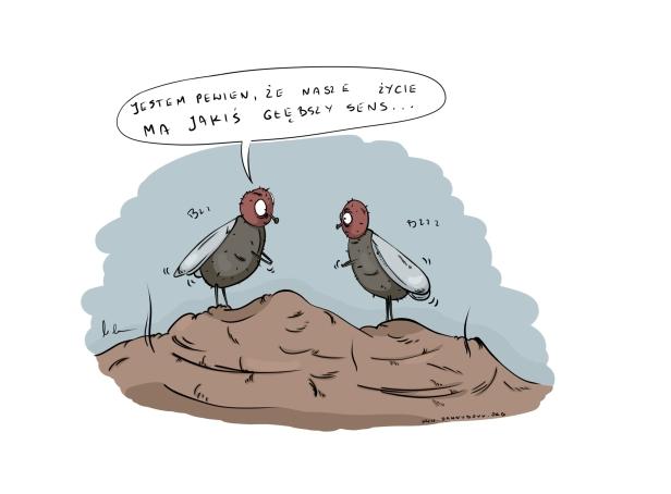 dwiemuchy